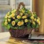 Крутая картинка для аватарки из категории Цветы #695