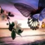Бесплатная ава из категории Цветы #765