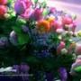 Красивая автрака из категории Цветы #809