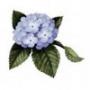 Оригинальная картинка для аватарки из категории Цветы #812