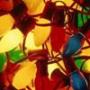 Крутая ава из категории Цветы #822