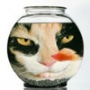 Крута картинка для аватарки из категории Тварини #1621