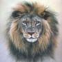 Крутая ава из категории Животные #1667