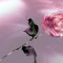 Безкоштовна автрака из категории Кохання #2459
