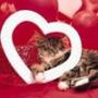 Прикольная ава из категории Любовь #2468