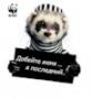 Бесплатная картинка для аватарки из категории С надписями #3124