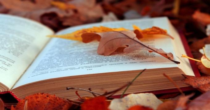 Соловки—  Донецьк—  Одеса: 5книжок осені