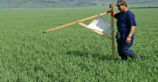 Україна може влізти в нові борги через землю, але є вихід