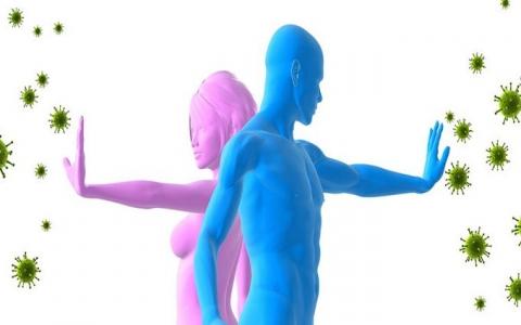 Женский и мужской иммунитет: отличия