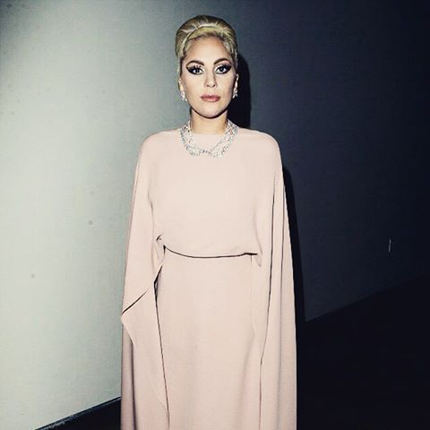 Сдержанность и элегантность: Леди Гага на благотворительном вечере