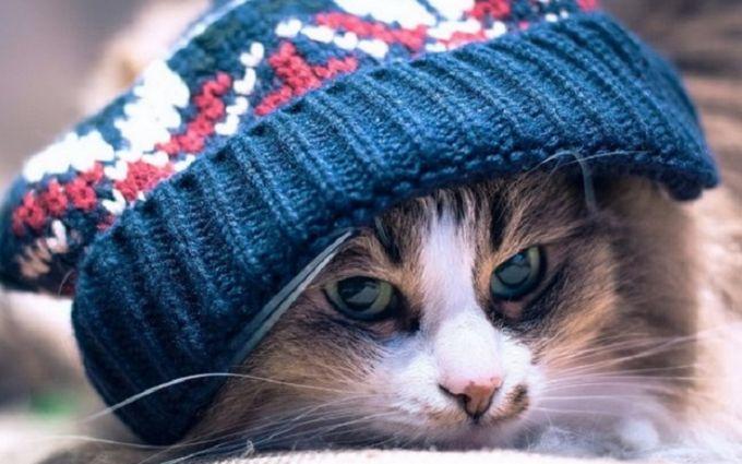Синоптик предупредила о существенном похолодании— Украинское государство накрыли антициклоны