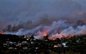 Власти Греции назвали шокирующую причину смертельных пожаров в стране