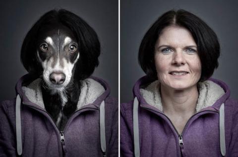 Собаки в образе своих владельцев (6)
