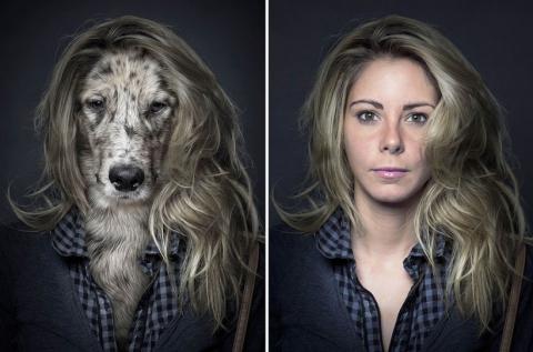 Собаки в образе своих владельцев (5)