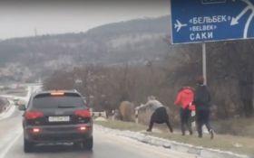 При Украине и мечтать не могли: появилось новое видео того, во что Россия превратила Крым