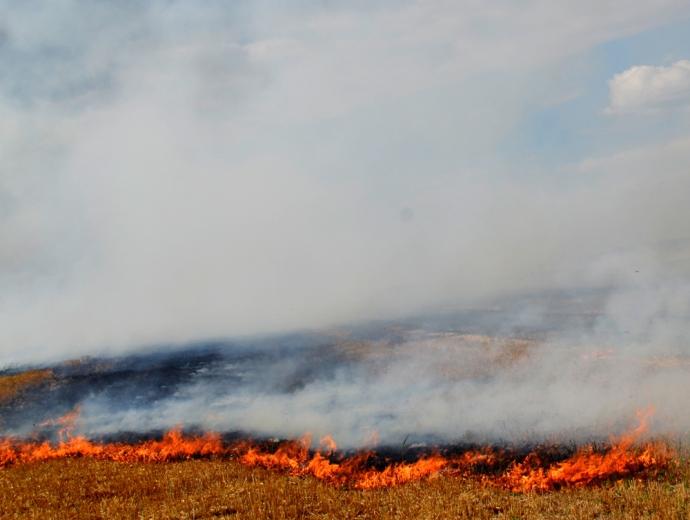 Під Одесою через пожежу зіткнулися п'ять машин і автобус: з'явилися фото (1)