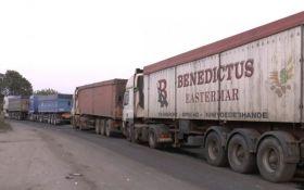 В Николаеве вышли на борьбу с мусором из Львова: опубликовано видео