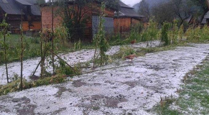 На Прикарпатті випав перший сніг: з'явилися яскраві фото і відео (1)