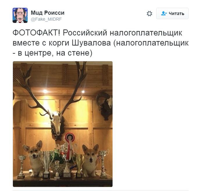 Соцмережі киплять через собачий скандал з дружиною міністра Путіна (5)