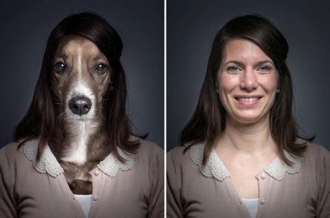 Собаки в образе своих владельцев (3)