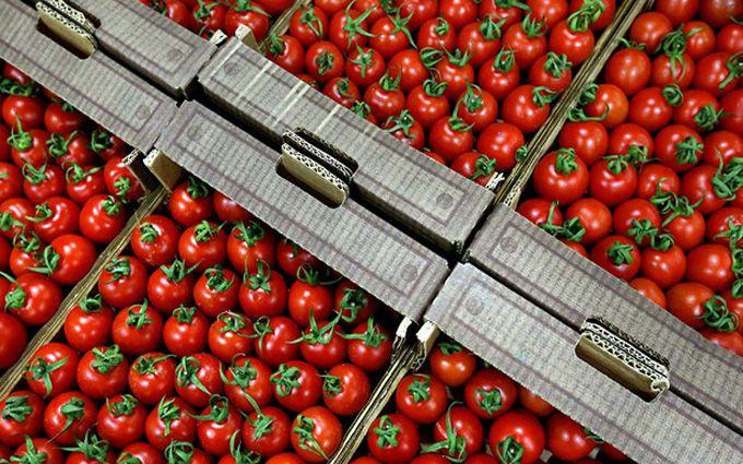 Стало известно, какой вред РФ нанесла «помидорная война» сТурцией