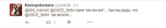 Миле фото: соцмережі обурив знімок спостерігача ОБСЄ з бойовиком на Донбасі (2)