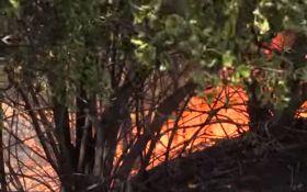 Донеччина у вогні: з'явилося відео наслідків обстрілу бойовиків ДНР