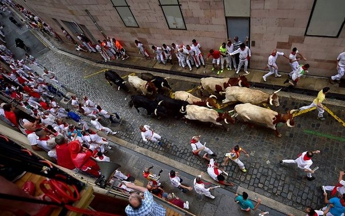 В Испании проходит популярный фестиваль быков: появились первые зрелищные видео