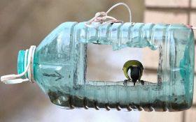 Фото кормушки для украинской птицы-прокурора развеселило соцсети