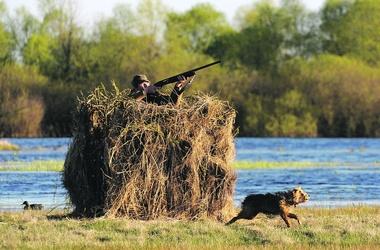 Правительство приготовило охотникам сюрпризы – в том числе повышение штрафов