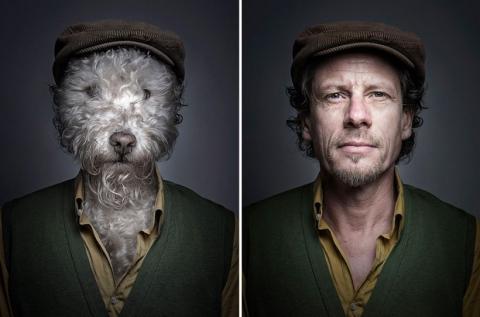 Собаки в образе своих владельцев (2)