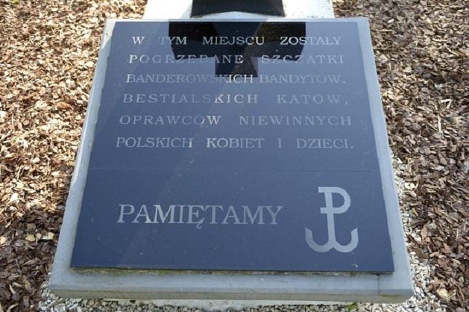 У Польщі ухвалили гучний документ про вину українців у геноциді