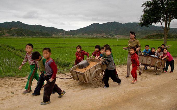 Шокирующая цифра: названо количество жителей КНДР, которые находятся на грани голода