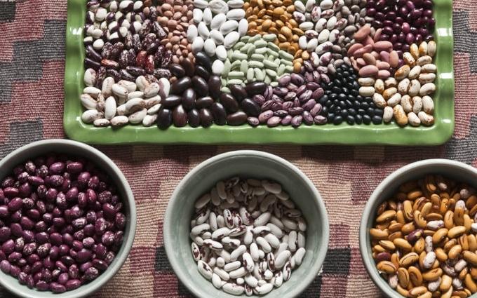ТОП-10 продуктів, які ніколи не псуються: корисний рейтинг