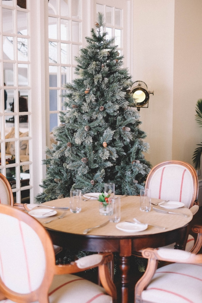 Настоящие или искусственные елки: как выбрать главный символ Нового года? (1)
