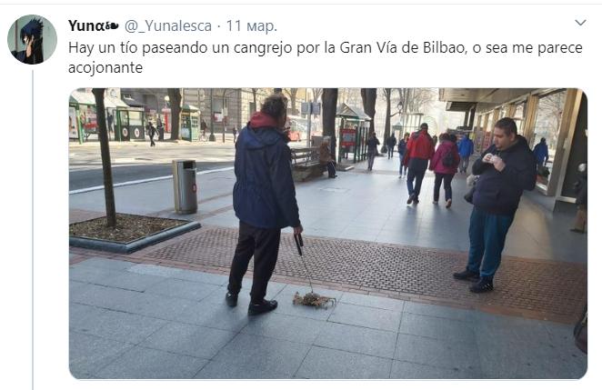 Вигулюють іграшкових собак і курей: іспанці знаходять смішні приводи вийти на вулицю під час карантину (2)