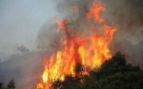 Смертельные пожары в Греции: опубликованы шокирующие видео