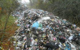 Львов выделил 21 млн гривень городам области за прием мусора