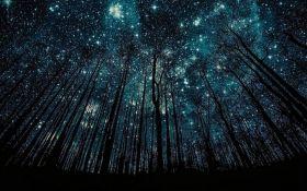 Украинцы увидят новый зрелищный звездопад: когда и где смотреть невероятное астрономическое шоу