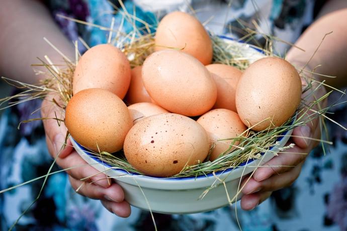Куриные яйца помогают организму в борьбе с диабетом