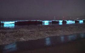 Захватывающее зрелище - видео светящегося океана заворожили весь мир