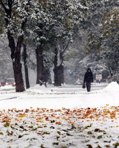 Через сильний снігопад у Польщі загинули двоє осіб (6 фото) (6)