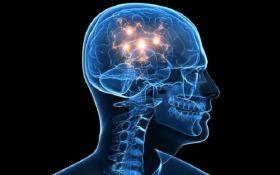 """Ученые обнаружили в голове человека """"GPS"""""""