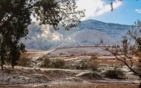 В жаркой пустыне Сахара выпал снег: опубликовано видео удивительного явления