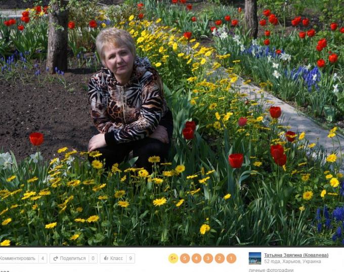 """Затятих любителів Путіна і """"руського миру"""" знайшли ще в одному місті України: стали відомі подробиці (22)"""