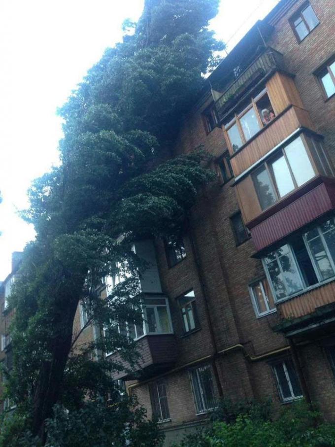 Непогода в Киеве: появились новые фото ужасных последствий ливня (1)
