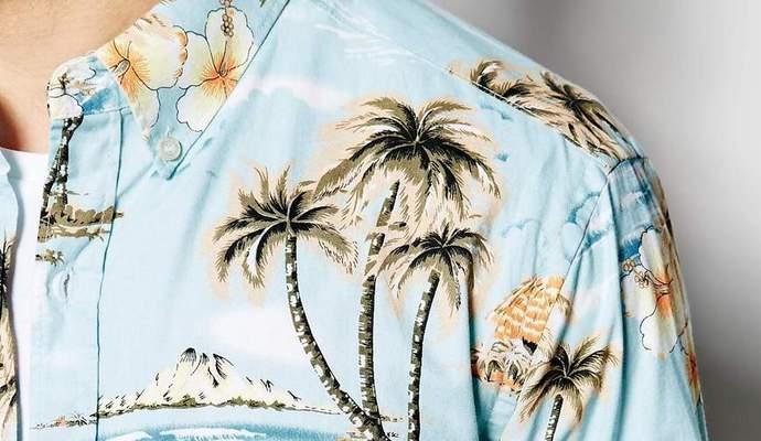 Конгрессменам США предложили по пятницам надевать гавайские рубашки