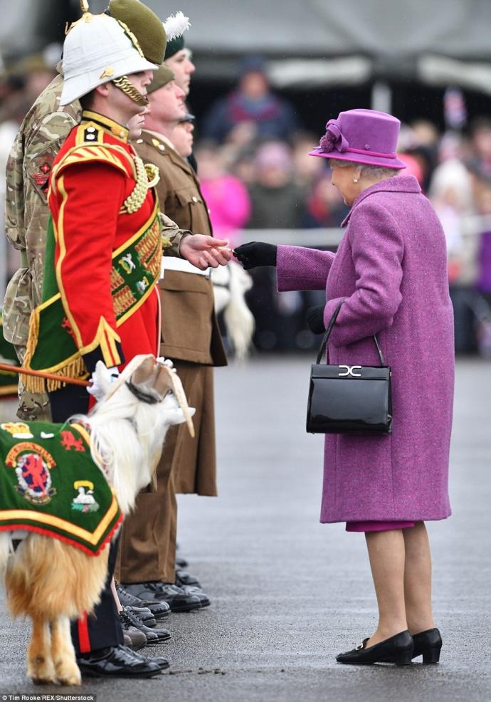 90-летняя королева Великобритании прокатилась на пони в элегантном наряде: появились фото (5)
