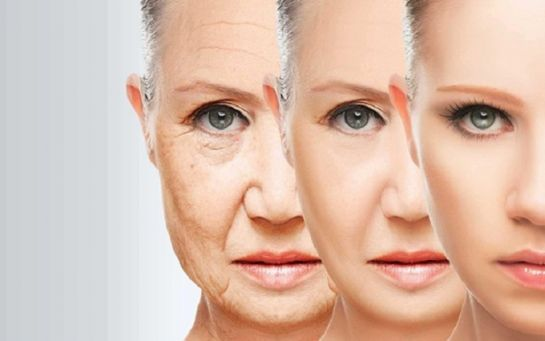 Впервые в истории: ученые смогли остановить старение клеток человека