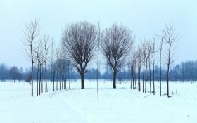 Прогноз погоди в Україні на вівторок - 22 січня